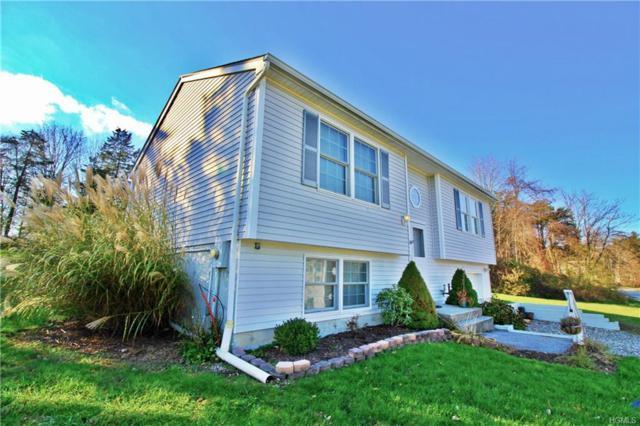 32 Nicole Lane, Wingdale, NY 12594 (MLS #4850997) :: Mark Seiden Real Estate Team
