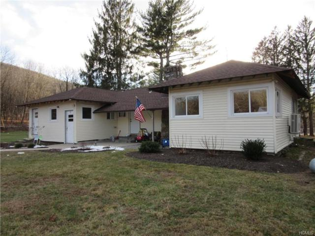3888 Route 52, Holmes, NY 12531 (MLS #4851035) :: Mark Boyland Real Estate Team