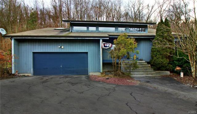 2 Woodridge, Putnam Valley, NY 10579 (MLS #4851136) :: Mark Seiden Real Estate Team