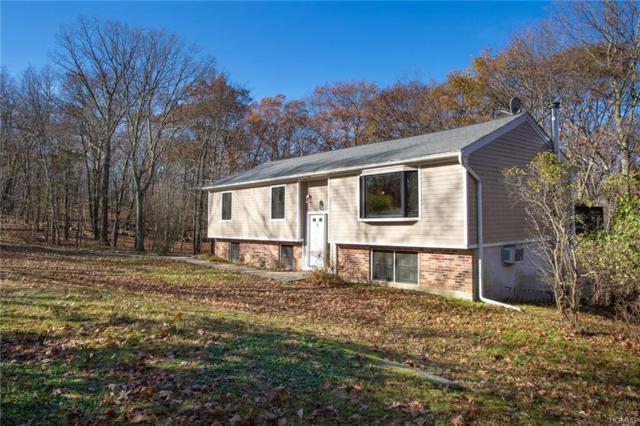278 E Mountain Road, Cold Spring, NY 10516 (MLS #4851141) :: Mark Seiden Real Estate Team