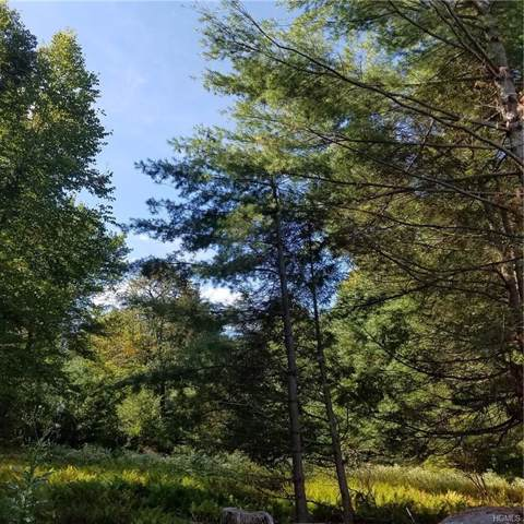 Rose Valley Road, Monticello, NY 12701 (MLS #4851175) :: Mark Boyland Real Estate Team