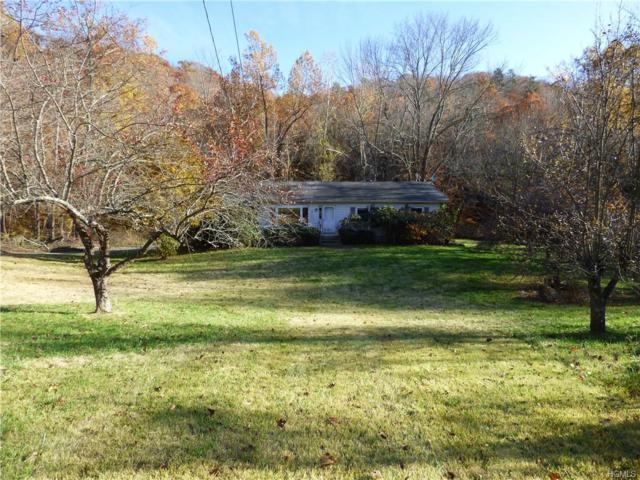 150 Birch Hill Road, Patterson, NY 12563 (MLS #4851279) :: Mark Seiden Real Estate Team