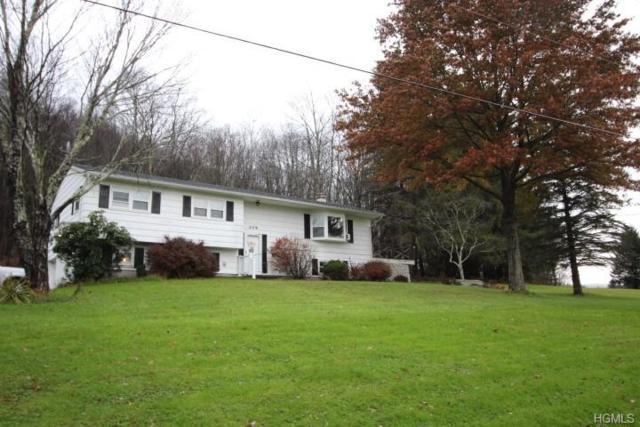 209 Hazel Road, Livingston Manor, NY 12758 (MLS #4851321) :: Mark Seiden Real Estate Team