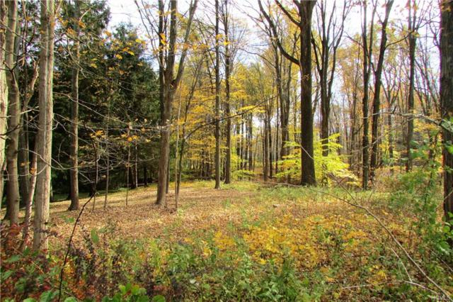 202 Route 100, Katonah, NY 10536 (MLS #4851325) :: Mark Boyland Real Estate Team