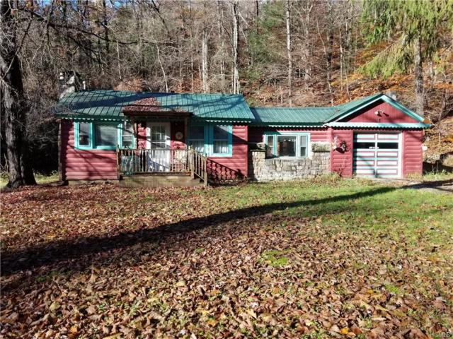 253 Pepacton Hollow Road, Grahamsville, NY 12740 (MLS #4851365) :: Stevens Realty Group