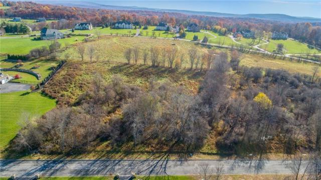 15 White Tail Drive, Goshen, NY 10924 (MLS #4851474) :: William Raveis Legends Realty Group