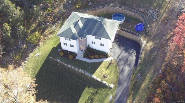 510 Van Wyck Lake Road, Hopewell Junction, NY 12533 (MLS #4851538) :: Mark Seiden Real Estate Team