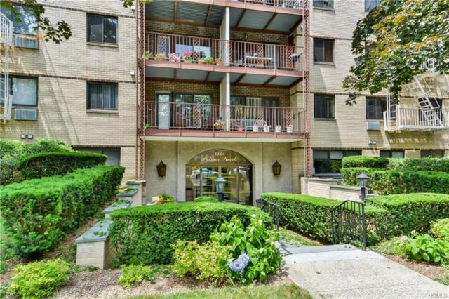 2201 Palmer Avenue 1J, New Rochelle, NY 10801 (MLS #4851564) :: Mark Boyland Real Estate Team