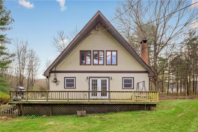 274 Dog Tail Corners Road, Wingdale, NY 12594 (MLS #4851583) :: Mark Boyland Real Estate Team