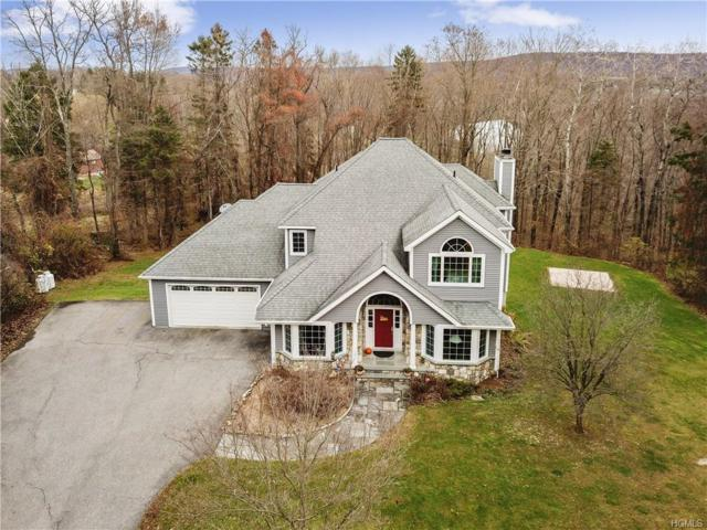 60 Margherita Lane, Pawling, NY 12564 (MLS #4851619) :: William Raveis Legends Realty Group