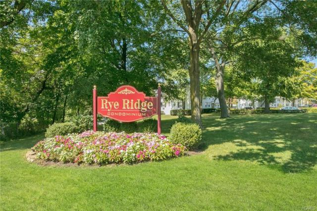 56 Avon Circle B, Rye Brook, NY 10573 (MLS #4851639) :: William Raveis Legends Realty Group