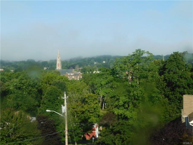 3 Hopkins Terrace, Goshen, NY 10924 (MLS #4851695) :: Mark Seiden Real Estate Team