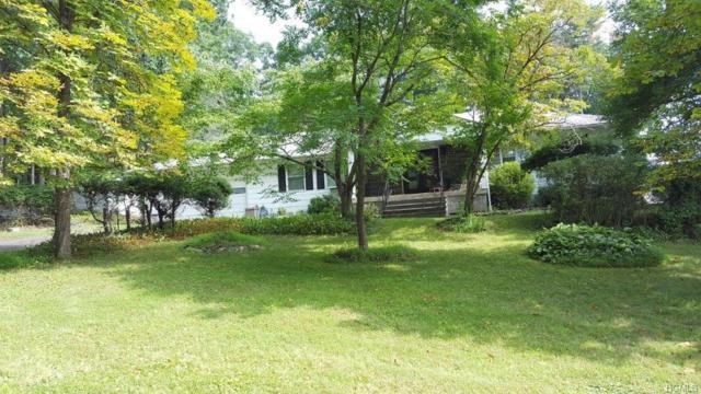 253 City View Terrace, Kingston, NY 12401 (MLS #4851774) :: Stevens Realty Group