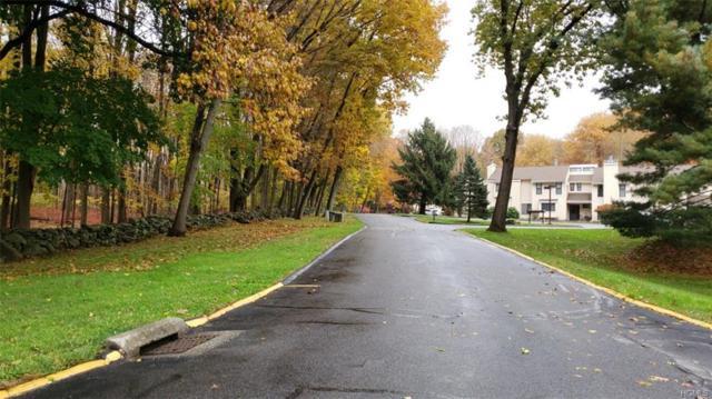 81 Woodland Trail, Carmel, NY 10512 (MLS #4851816) :: Stevens Realty Group