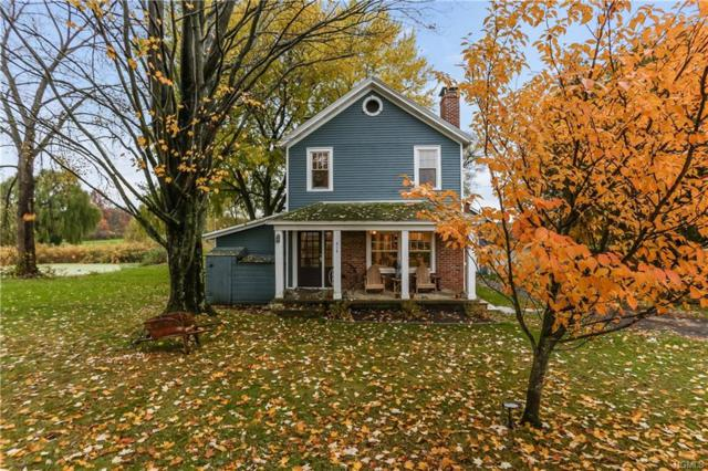 215 Moores Road, Germantown, NY 12526 (MLS #4851855) :: Shares of New York
