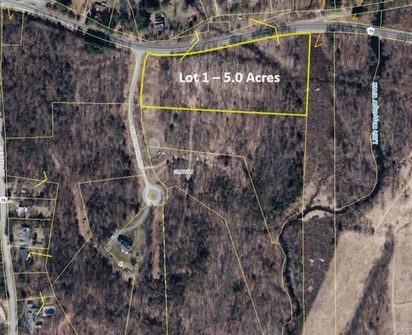 1 Crimson Hill Road, Rhinebeck, NY 12572 (MLS #4851869) :: Mark Seiden Real Estate Team