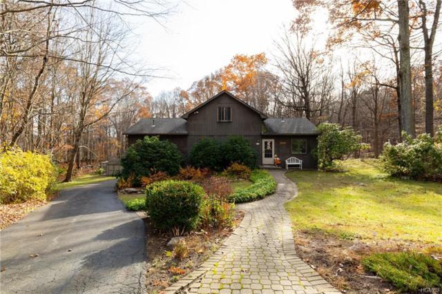 25 Ivy Lane, Stormville, NY 12582 (MLS #4851926) :: Mark Seiden Real Estate Team