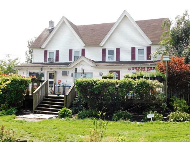 1166 County Road 114, Cochecton, NY 12726 (MLS #4851963) :: Stevens Realty Group