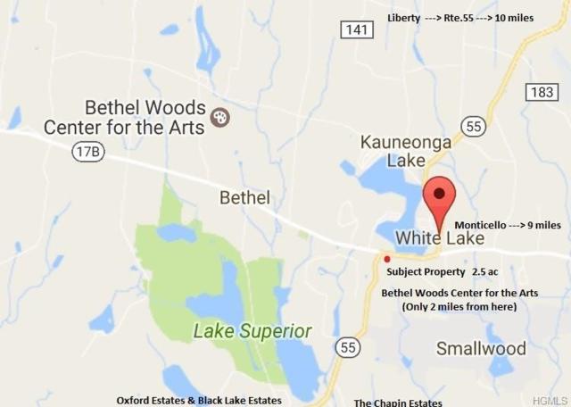 Nys 17-B, White Lake, NY 12786 (MLS #4852083) :: Stevens Realty Group