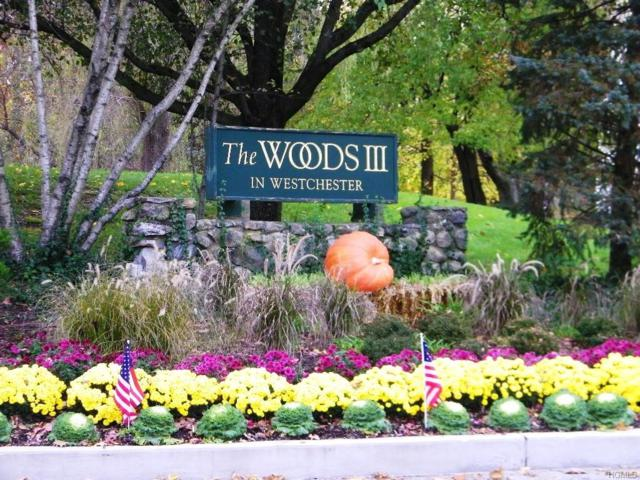 12 Elmwood Circle, Peekskill, NY 10566 (MLS #4852086) :: Mark Seiden Real Estate Team
