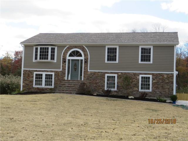 39 Stephen Drive, Hopewell Junction, NY 12533 (MLS #4852228) :: Mark Seiden Real Estate Team