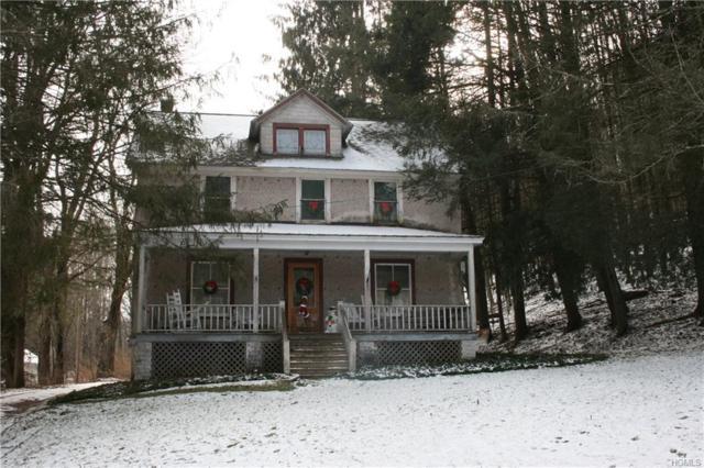 17 Anawanda Lake Road, Callicoon Center, NY 12724 (MLS #4852239) :: Mark Boyland Real Estate Team