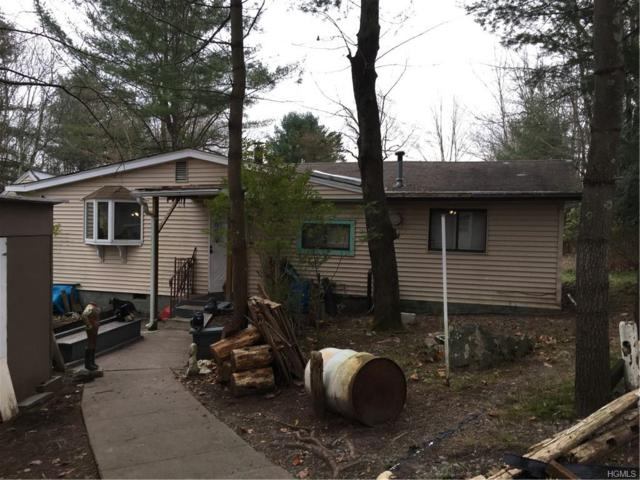 76 Britman Road, Mongaup Valley, NY 12762 (MLS #4852283) :: Stevens Realty Group