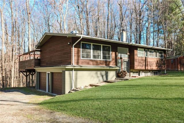 11 Carpenter Road, Hopewell Junction, NY 12533 (MLS #4852372) :: Mark Seiden Real Estate Team