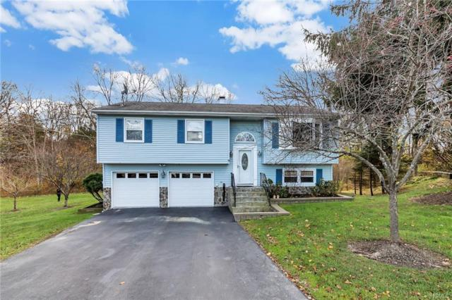 9 Earl Court, Poughkeepsie, NY 12603 (MLS #4852455) :: Shares of New York