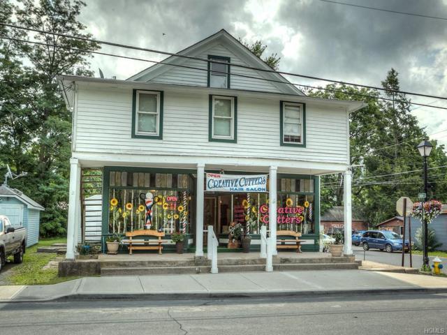 38 Main Street, Napanoch, NY 12458 (MLS #4852483) :: Stevens Realty Group
