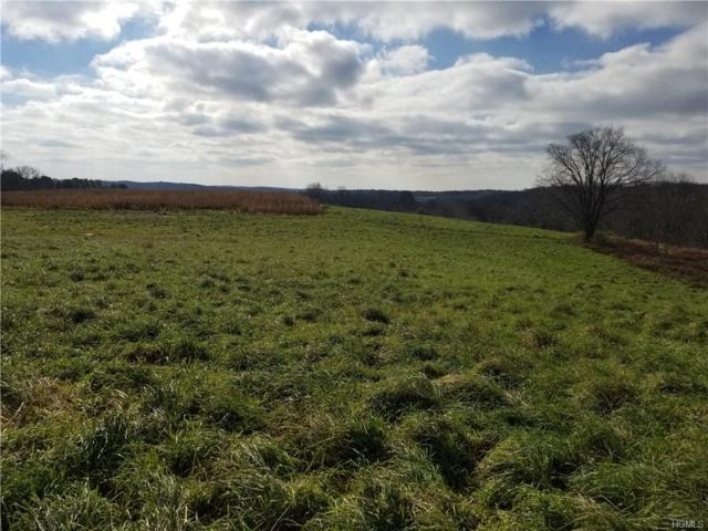 Bernas Road, Cochecton, NY 12726 (MLS #4852655) :: William Raveis Legends Realty Group