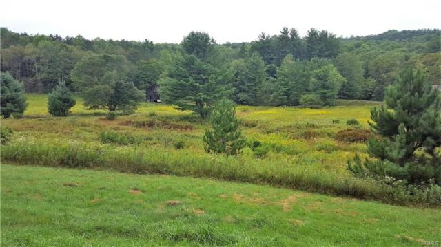 State Route 55, Neversink, NY 12765 (MLS #4852694) :: Mark Boyland Real Estate Team