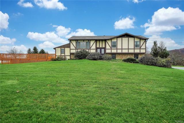 435 Willow Tree Road, Milton, NY 12547 (MLS #4852715) :: Mark Boyland Real Estate Team