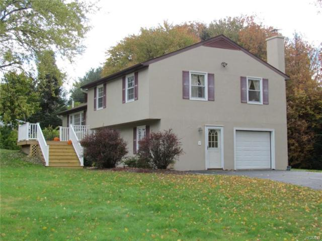 7 Mcallister Drive, Pleasant Valley, NY 12569 (MLS #4852725) :: Mark Seiden Real Estate Team