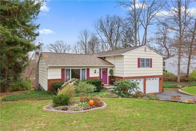 107 Geymer Drive, Mahopac, NY 10541 (MLS #4852866) :: Mark Seiden Real Estate Team