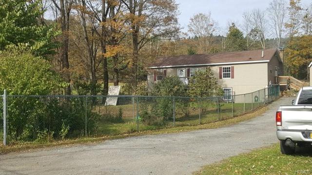 54 Pine Kill Road, Wurtsboro, NY 12790 (MLS #4852899) :: The Anthony G Team