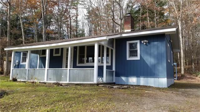 581 Lake Shore Lane, Narrowsburg, NY 12764 (MLS #4852912) :: Stevens Realty Group