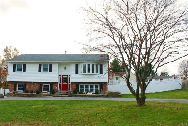 11 Mills Road, Middletown, NY 10941 (MLS #4852975) :: William Raveis Legends Realty Group