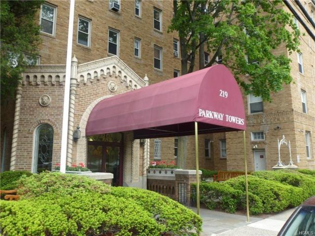 219 Bronx River Road 2E, Yonkers, NY 10704 (MLS #4853040) :: Mark Boyland Real Estate Team