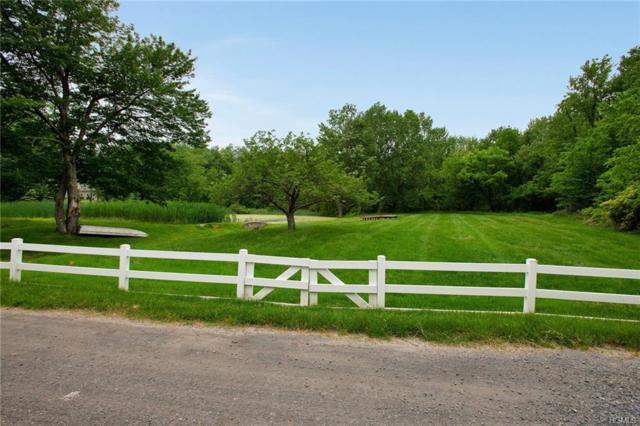16 Jacks Pond Road, Newburgh, NY 12550 (MLS #4853076) :: William Raveis Legends Realty Group