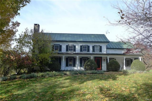 915 Turkey Hill Road, Red Hook, NY 12571 (MLS #4853147) :: William Raveis Baer & McIntosh