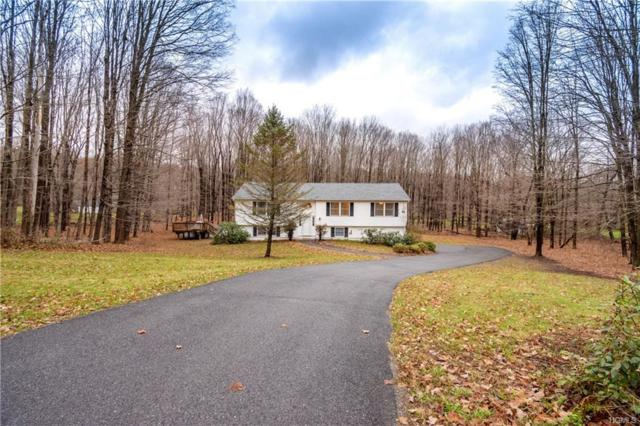 100 Cascade Road, Amenia, NY 12501 (MLS #4853334) :: Stevens Realty Group