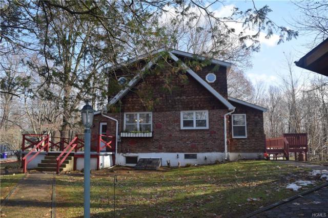 207 Pine Island Turnpike, Warwick, NY 10990 (MLS #4853437) :: William Raveis Baer & McIntosh