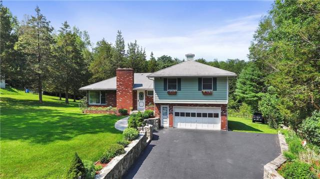 55 Canopus Hollow Road, Putnam Valley, NY 10579 (MLS #4853683) :: Stevens Realty Group