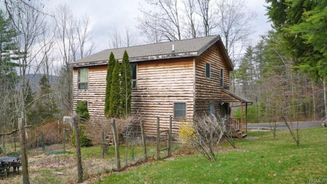 254 Upper Boiceville Road A, Boiceville, NY 12412 (MLS #4853735) :: Shares of New York