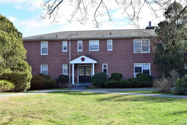 219 Schrade Road 1B, Briarcliff Manor, NY 10510 (MLS #4854278) :: Mark Seiden Real Estate Team