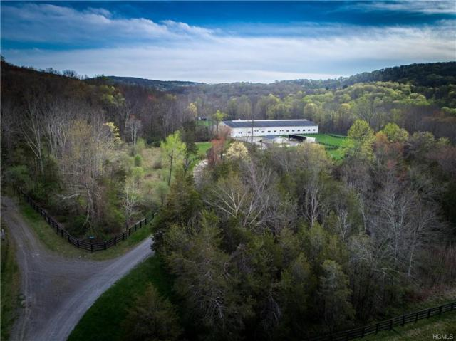45 Kings Ranch Road, Wingdale, NY 12594 (MLS #4854596) :: Mark Boyland Real Estate Team