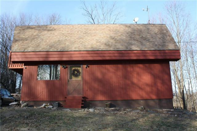 195 Roselawn Road, Highland Mills, NY 10930 (MLS #4854780) :: William Raveis Baer & McIntosh