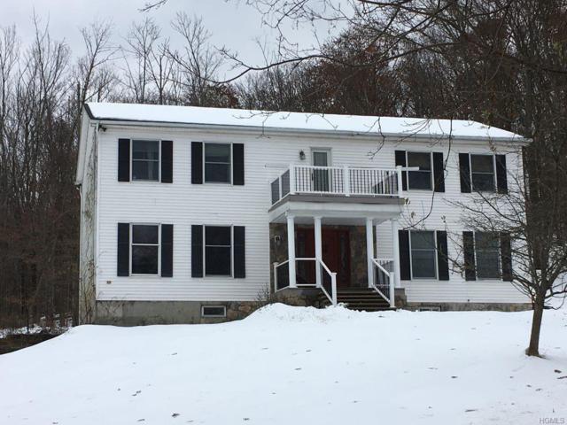 92 Helms Hill Road, Washingtonville, NY 10992 (MLS #4854816) :: William Raveis Baer & McIntosh