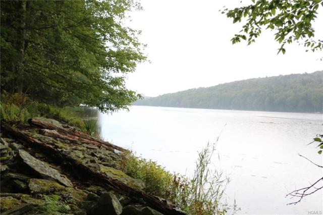 Lot 38 Kenoza Trail, Kenoza Lake, NY 12750 (MLS #4854876) :: Mark Boyland Real Estate Team